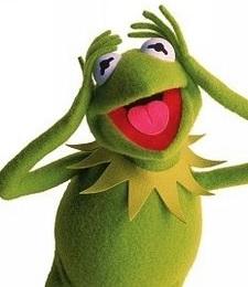 Žabec Kermit.