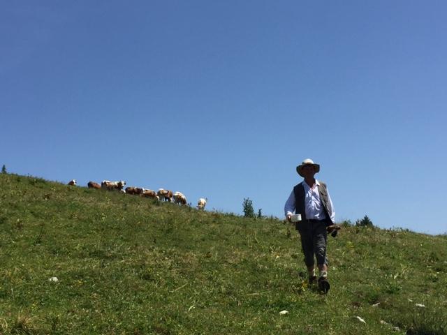 Čisto pravi krvavški pastir. Foto: Sonja Merljak/Časoris