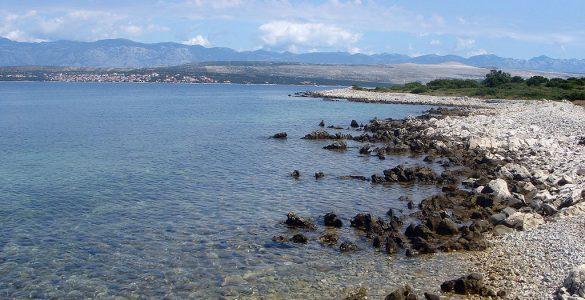Maun. Vir: Wikimedia/CC