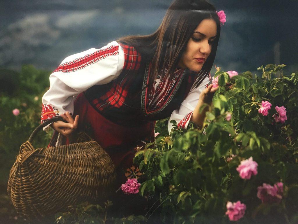 Dolina vrtnic. Foto: Sonja Merljak/Časoris