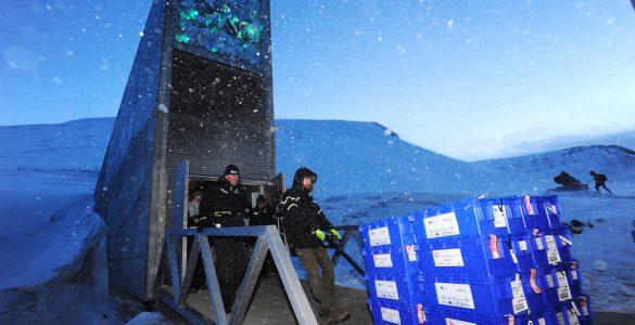 Svalbard. Vir: Crop Trust