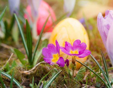 Velikonočno jajce. Vir: Pixabay