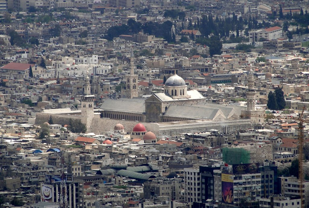 Damask. Foto: Bernard Gagnon/Wikipedia