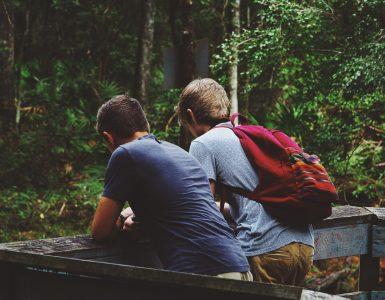 Kako pomagati prijatelju? Vir: Pixabay