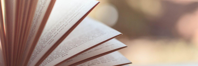 Ta veseli dan branja na OŠ Pirniče. Vir: Pixabay