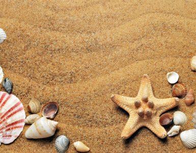 Poletne počitnice so tik pred vrati. Foto: Croisy/Pixabay