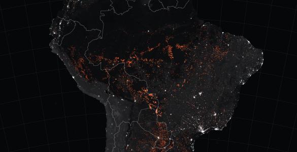 Požar v amazonskem pragozdu je viden tudi iz vesolja. Vir: Nasa