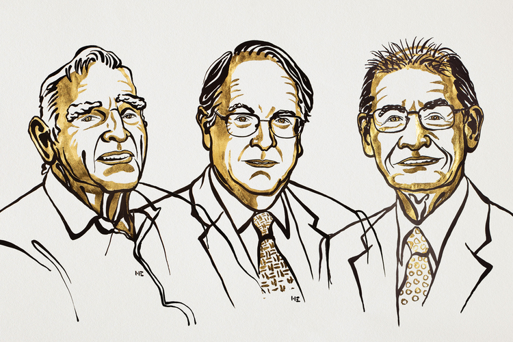 Nagrajenci za kemijo. Ilustracija: Niklas Elmehed/Nobel Media
