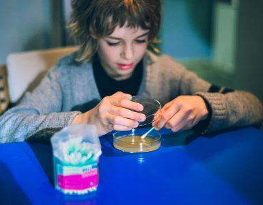 Izziv številka 1 bakteriologija ali kako namnožiti bakterije iz svojih rok v domači kuhinji. Foto: Hana Jošić/Arhiv Rampa Lab