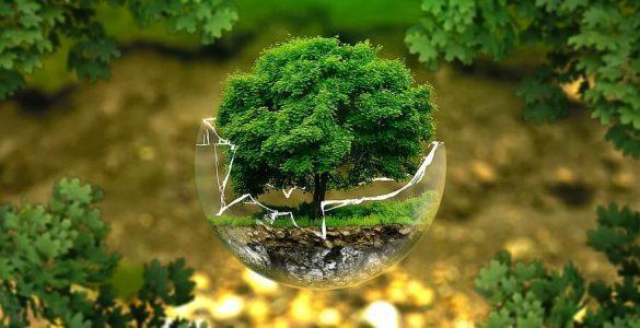 Zemljo moramo zaščititi. Vir: Pikist