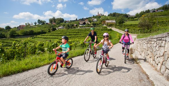 Družina kolesari po Trški gori. Foto: Jošt Gantar/STO