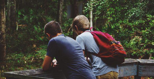 Otroci v šoli dobijo prve prijatelje. Vir: Pixabay