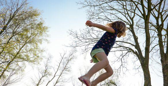 V gozdu lahko skačeš in preskakuješ štore. Vir: Pixabay