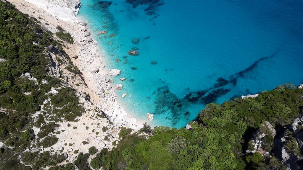 Ema je lani obiskovala Capri, letos pa se potepa po Sardiniji. Vir: Pixabay