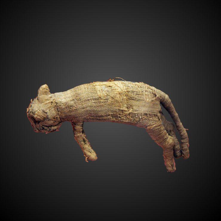 Mumificirana mačka. Vir: Wikimedia Commons