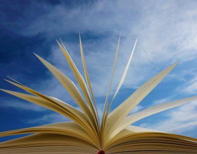 Kaj so se učitelji naučili med izobraževanjem na daljavo? Vir: Pixabay