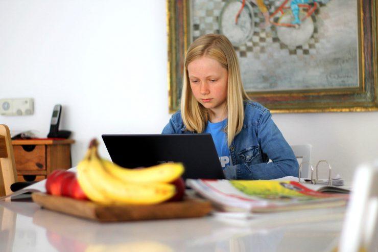 V domači učilnici. Vir: Pixabay