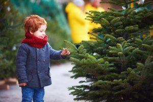 Kje lahko kupimo božično drevo v teh koronačasih? Vir: Adobe Stock