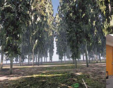 Sprehod po gozdu s 3D očali. Vir: arhiv soavtorice raziskave Jiawei Huang