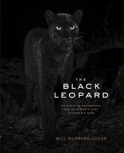 Naslovnica knjige Willa Burrard-Lucasa, kjer je na voljp še več fotografij črnega leoparda. Foto: Will Burrard-Lucas