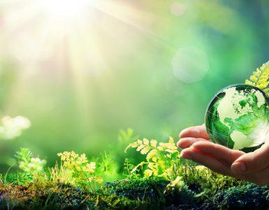 Za preprečitev najhujših posledic podnebnih sprememb, bi morali po izračunih dvig temperature do konca stoletja omejiti na največ 1,5 stopinje Celzija. Vir: Adobe Stock