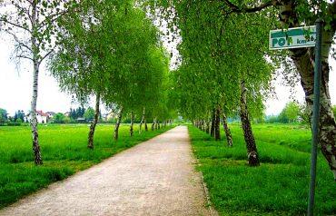 Pot ob žici je primerna tako za pohodnike kot tudi za tekače. Vir: Wikipedia