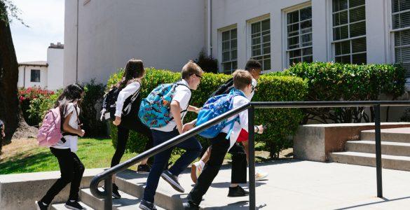 Pouk bo spet potekal v mehurčkih, bodo pa letos šole vsaj lahko izvajale interesne dejavnosti in šolo v naravi. Vir: Pexels