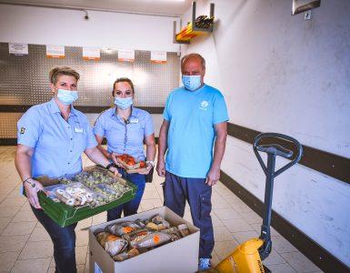 V Lidlu Slovenija presežno hrano donirajo različnim humanitarnim ustanovam po vsej Sloveniji, s katerimi tudi sicer redno sodelujejo. Vir: Lidl Slovenija